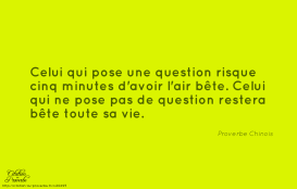 proverbe-chinois.20695-vie-avoir-toute-air-betise-bete-risque-minutes-chinois-proverbe-restera-question-cinq-pose